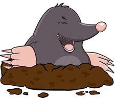 The_Mole