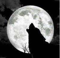 Wolfgiungle