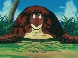 Turtle22
