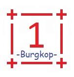 burgkop