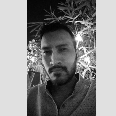 Mr. Ajay Singh Rajput