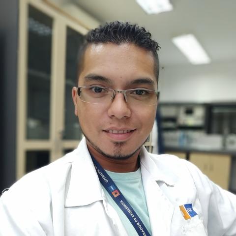 Mauricio Del Pino C.
