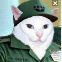 Fidel Catto