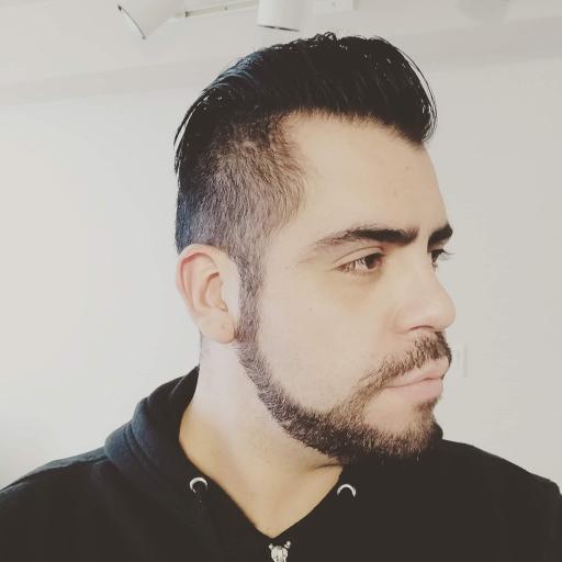 G_Hugo_Meneses_rOcc