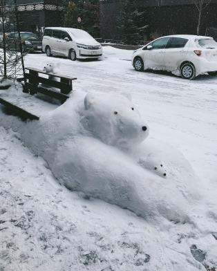 raise snow