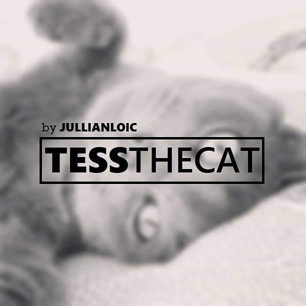 Tessthecat