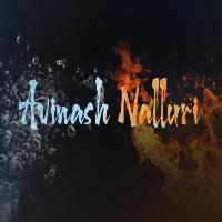 Avinash Nalluri