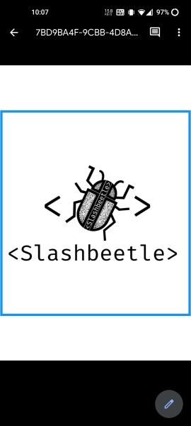 Slashbeetle